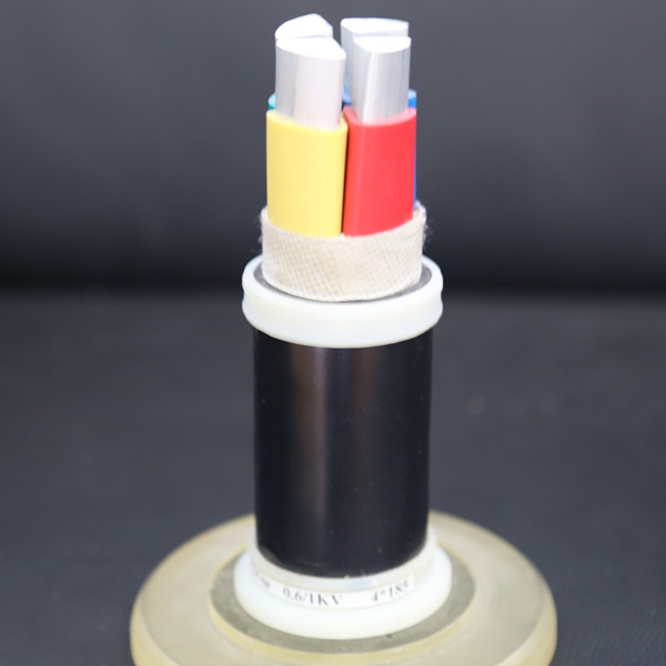 Waterproof cross-linked PE insulated power cable of rated voltage 0.6/1kV